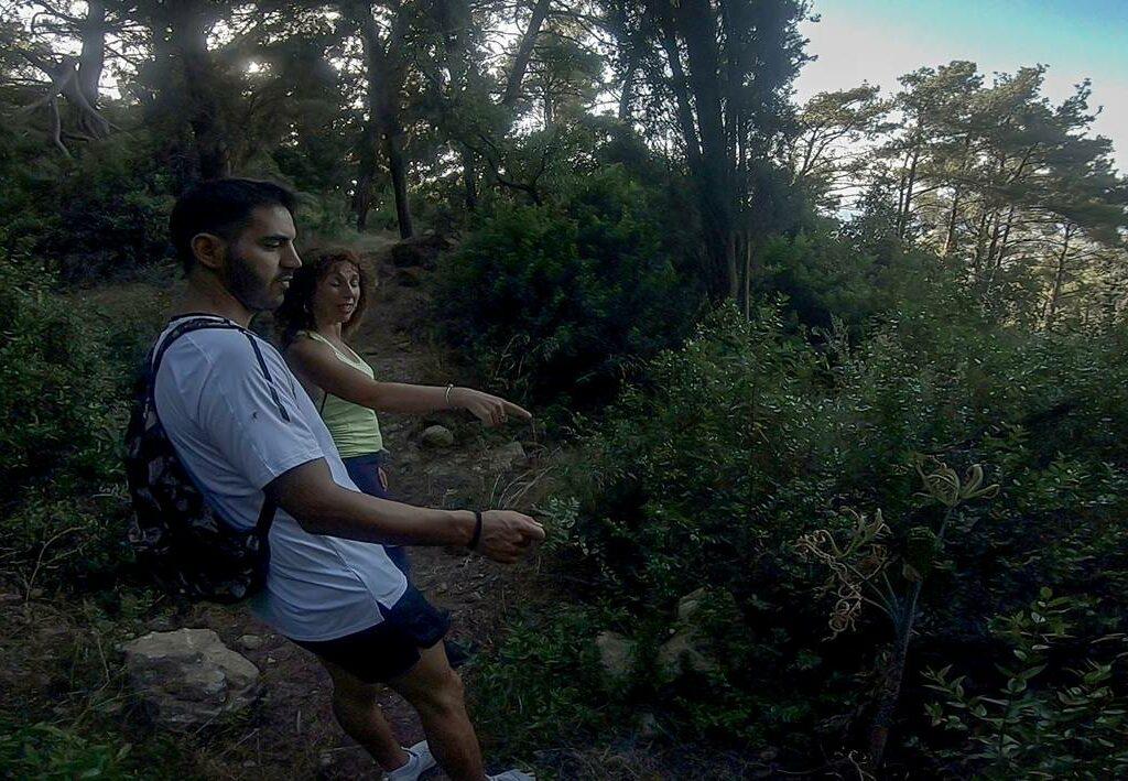 filerimos hiking herbs