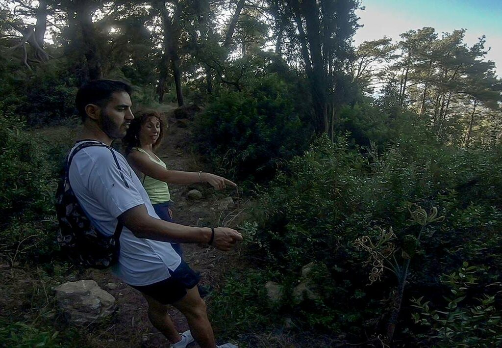 hiking--n1-sm